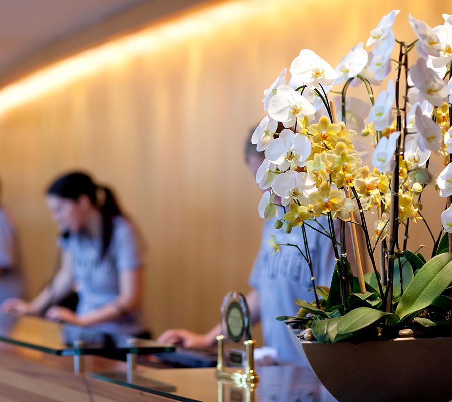 bradhams_flowers_health-centre-2