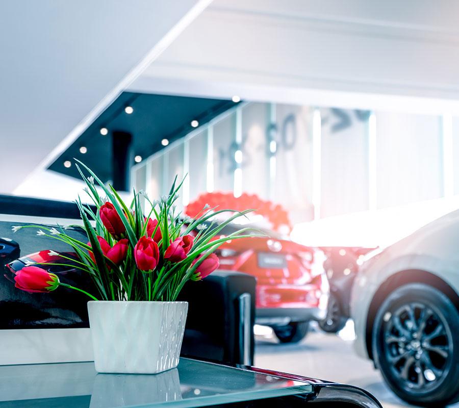bradhams_flowers_showroom-2
